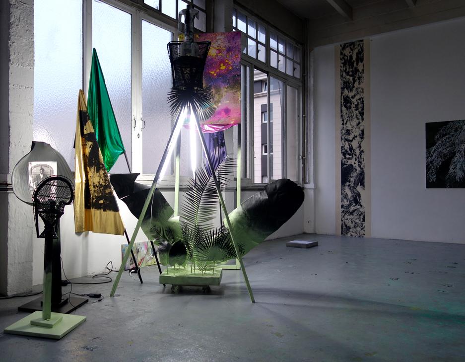 Raphaël Barontini, Installazione 'Saccades' - Exposition Saxifraga Umbrosa II, 2014